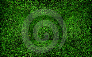 Grass Room Stock Images - Image: 19606134