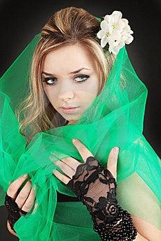 Girl In Veil Stock Photos - Image: 19606313