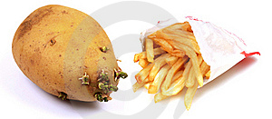 French Fries Stock Images - Image: 19613524