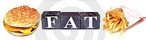 Fat Royalty Free Stock Photo - Image: 19613645