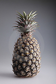 Pineapple Royalty Free Stock Image - Image: 19626506