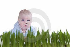 Kid Crawl Royalty Free Stock Image - Image: 19630106