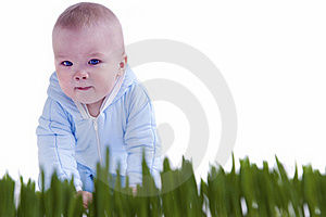 Kid Crawl Stock Images - Image: 19630114