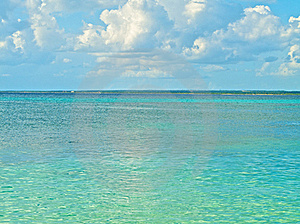 The Beach Royalty Free Stock Photo - Image: 19645955
