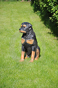 Dog - Garden Sculpture. Royalty Free Stock Image - Image: 19652646