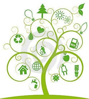 Tree Ecology Royalty Free Stock Photo - Image: 19658655
