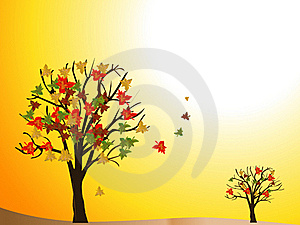 Seasonal Tree Autumn Royalty Free Stock Photography - Image: 19662757