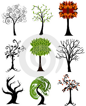 Set Of  Seasonal Trees Royalty Free Stock Image - Image: 19664556