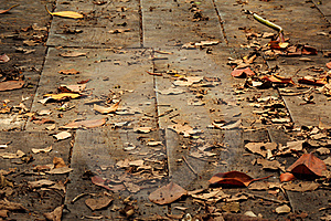 Old Wooden Path Background Stock Photos - Image: 19667953