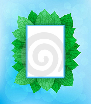 Nature Theme Frames Royalty Free Stock Photo - Image: 19673895