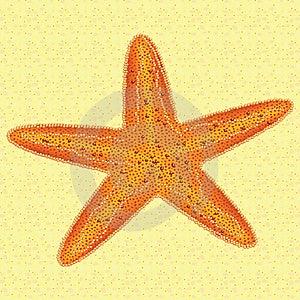 Starfish Royalty Free Stock Photo - Image: 19674155