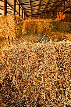 Hay Pile Stock Photo - Image: 19678160