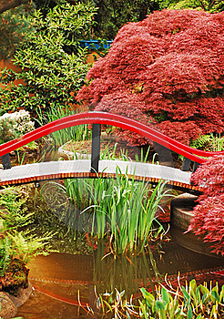 Colorful Japanese Garden Stock Photography - Image: 19681702
