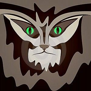 Serious Cat. Stock Image - Image: 19690811