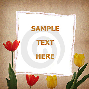 Tulip And Old Paper For Text And Background Stock Photography - Image: 19706432