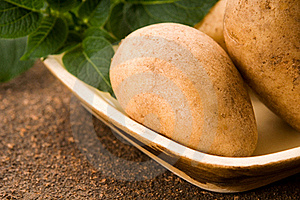 New Potato Stock Image - Image: 19711821