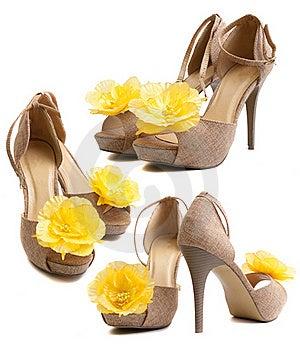 Women Shoes Stock Image - Image: 19716301