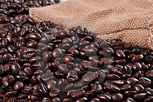 A Lot Of Coffee Beans Stock Photos - Image: 19721983