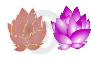 Lotus Flowers On White Royalty Free Stock Images - Image: 19733709