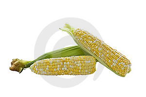 Mixed Corn- White And Yellow Royalty Free Stock Photo - Image: 19750825