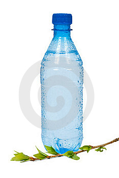 Bottle Of Water With Green  Branch Stock Photos - Image: 19751123