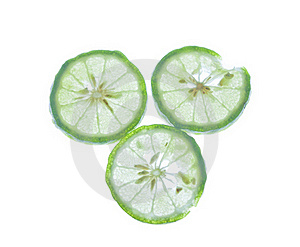 Leech Lime On A White Background. Stock Photos - Image: 19751493