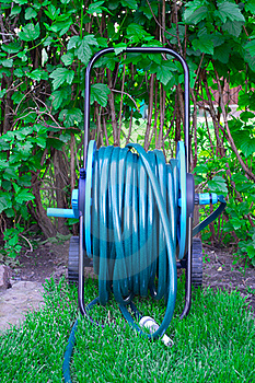 Hose For Watering Royalty Free Stock Photos - Image: 19755368