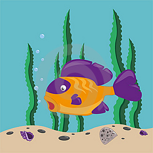 Yellow Fish Stock Photos - Image: 19761823