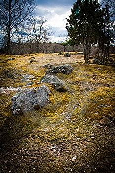 Stones Stock Photo - Image: 19772580