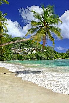 Amazing Seychelles Stock Image - Image: 19792851