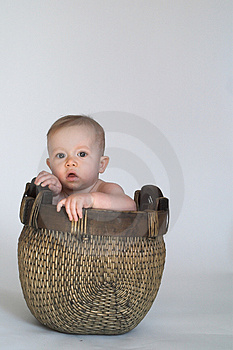 Basket Baby Stock Photos