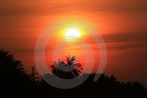 Sunrise Royalty Free Stock Photography - Image: 19802287