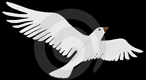 A Free Flying White Dove. Stock Photography - Image: 19813482