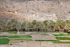 Old Omani Village Royalty Free Stock Photography - Image: 19815707