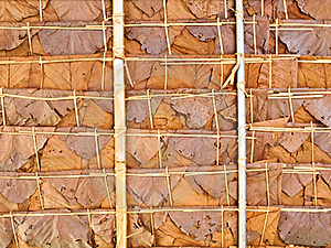 Roof Made Of Leaves Stock Images - Image: 19825764