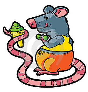 Rat Gym Stock Images - Image: 19827484