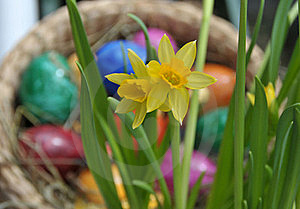 Feature Photo Easter Royalty Free Stock Photography - Image: 19829277