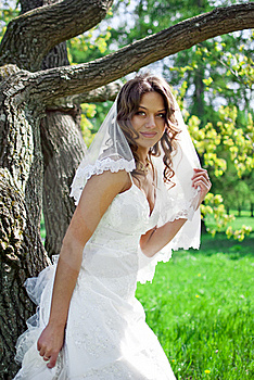 Attractive Bride Stands About Trees Royalty Free Stock Photography - Image: 19852187