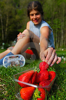 Strawberry Picnic Royalty Free Stock Photography - Image: 19854967
