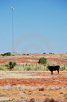Outback Scene Royalty Free Stock Images - Image: 19856299
