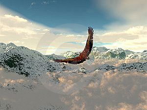Eagle In The Cold Mountains Royalty Free Stock Photo - Image: 19872485