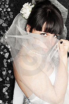 Bride It Covered Face Stock Photography - Image: 19873462