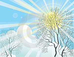 Sun Rays And Tree Royalty Free Stock Photography - Image: 19897907