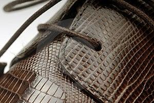 Shoes Exotic Stock Photo - Image: 1991000
