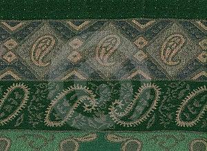 Green Pashmina Shawl Stock Image - Image: 19915421