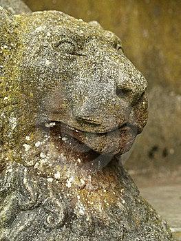 Stone Lion Stock Photo - Image: 19919320