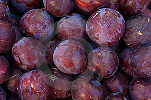 Organic Plums Royalty Free Stock Photos - Image: 19921198