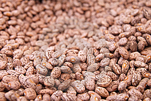 Background Of Beans Royalty Free Stock Photo - Image: 19943905