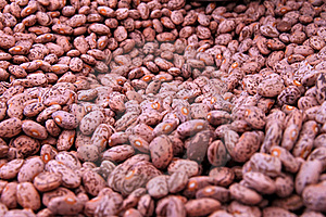 Background of beans Stock Images
