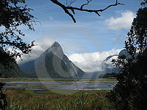 Milford Sounds, New Zealand Stock Image - Image: 19955591